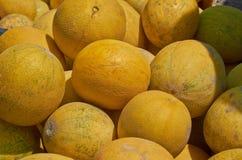 Hög av gula melon Royaltyfri Fotografi