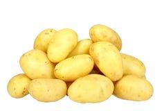 Hög av gula rå potatos Arkivbild