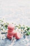 Hög av hallonmakron och körsbärblommor Royaltyfria Foton