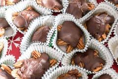Hög av hemlagade sköldpaddagodisar för choklad, för karamell och för pecannöt arkivfoton
