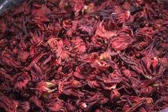 Hög av hibiskusblomman Royaltyfri Bild