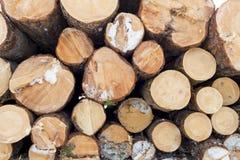 Hög av huggit av wood förberett för brand för vintern, bakgrund royaltyfri fotografi