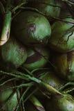 Hög av kasserade kokosnötskal Arkivfoto