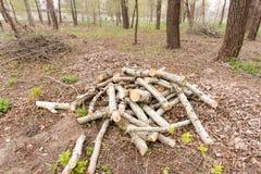 Hög av klippt trä Royaltyfria Foton