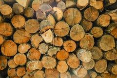 Hög av klippt trädträ som abstrakt naturlig bakgrund Royaltyfri Bild