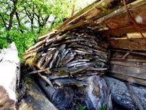 Hög av klippta ekväxter och träd Arkivfoton