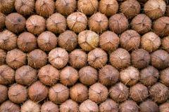 Hög av kokosnötbakgrund Royaltyfria Foton