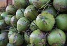 Hög av kokosnötter arkivbilder
