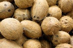 Hög av kokosnötter i matmarknaden royaltyfri fotografi