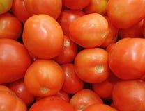 Hög av ljusa röda mogna organiska tomater Arkivfoto
