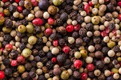 Hög av mångfärgad peppar Fotografering för Bildbyråer