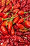 Hög av mogna och torkade röda peppar Piri-Piri Royaltyfri Fotografi