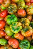 Hög av mogna organiska mångfärgade Raf Tomatoes på bondemarknaden vibrerande ljusa färger Vitaminer sunda Superfoods bantar begre Royaltyfri Foto