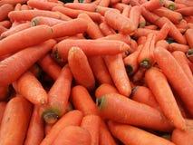 Hög av morötter arkivfoton