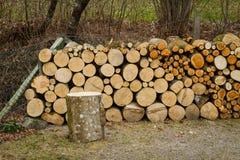 Hög av naturliga träjournaler Arkivfoton