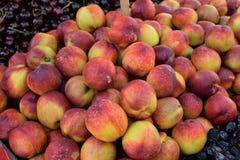 Hög av nektarinspeceriaffärfrukt Arkivfoto