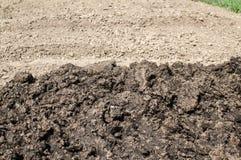 Hög av ny gödsel på lantligt jordbruks- fält Arkivbilder