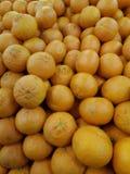 Hög av nya organiska apelsiner Royaltyfri Fotografi