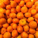 Hög av nya organiska orange Mandarines eller tangerin på en marke Royaltyfri Foto