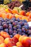 Hög av nya organiska persikor och Damsonplommoner Royaltyfri Foto