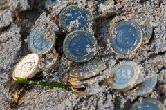 Hög av nya pundmynt Royaltyfri Bild
