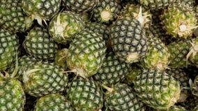 Hög av organisk jordbruksprodukter för ananors Arkivfoto