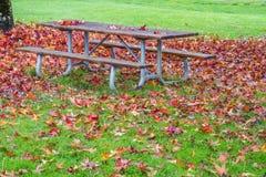 Hög av röda och guld- Autumn Maple Leaves på och runt om picknicktabellen fotografering för bildbyråer