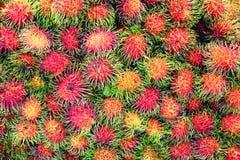Hög av rambutanfrukt för försäljning i gatamarknaden, Thailand, slut upp royaltyfri bild