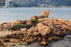 hög av stenar som djur från stranden in mot havsvatten Arkivfoton