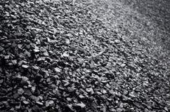 Hög av svart kol royaltyfria foton