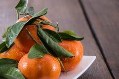 Hög av Tangerines Arkivfoton