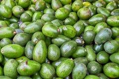 Hög av till salu nya avokadon arkivbild