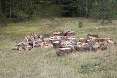 Hög av trä Royaltyfria Bilder