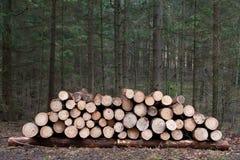 Hög av trä Royaltyfri Foto