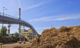 Trä och biomassaväxt royaltyfri fotografi
