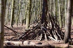 Hög av trä i skogen Royaltyfria Foton