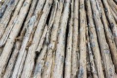 Hög av trädstammar Arkivfoto
