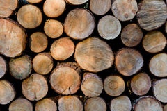 Hög av träjournaler som är klara för vinter. Arkivbild
