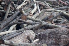 Hög av treestammar Arkivbild