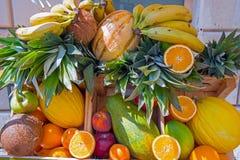 Hög av tropiska frukter Fotografering för Bildbyråer