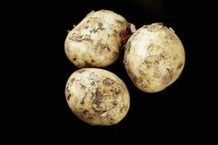 Hög av unga potatisar Royaltyfri Foto