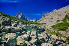 hög bergtatra Arkivbild