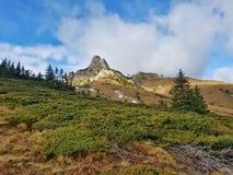 Hög carpatian berglandskape Arkivfoto