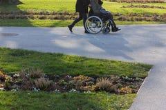 hög dam med rullstolen royaltyfri foto