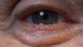 Hög dam som in camera ser, geriatriska synförmågaproblem, extrem closeup för öga lager videofilmer