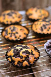 Hög-färgade kakor med blåbär, Arkivbild