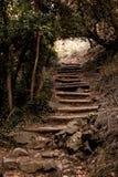 Hög gammal trappa i berget Royaltyfria Foton