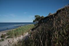 hög kust Arkivbild
