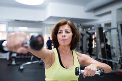 Hög kvinna i idrottshall som utarbetar med vikter Arkivfoto