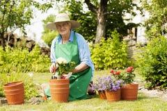 Hög kvinna i trädgård royaltyfria foton